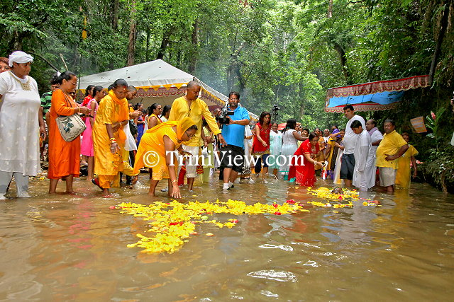 Symbolic sari of seven thousand buttercups is offered to the river